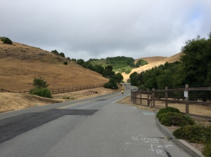Lucas Valley Road