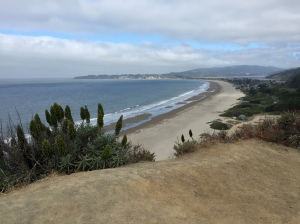 The view of Stinson Beach from the California 1.