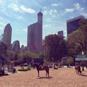 Central Park Horse Show 2014