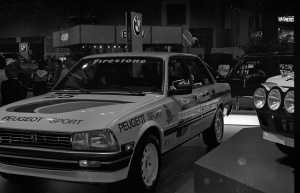 A long extinct Peugeot 505 rally car.